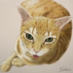 絵画 モダン アートパネル アート インテリア 雑貨 おしゃれ ロココロ 猫 ネコ ねこ 動物 アニマル 画家 : rune 作品 : あっかんべー|obeolysco