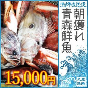 朝獲れ 鮮魚 セット 青森 尾駮漁港 15000円 贈り物 お歳暮 魚詰合せ|obuchisengyodan