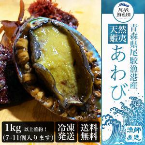 天然 蝦夷アワビ 1kg 冷凍 送料無料 青森産 エゾアワビ お刺身用 贈り物 お歳暮 あわび 鮑 正月 高級食材 ギフト 熨斗対応|obuchisengyodan