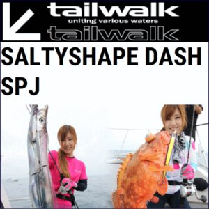 【大型商品】テイルウォーク ソルティシェイプダッシュスローピッチジャーク 638