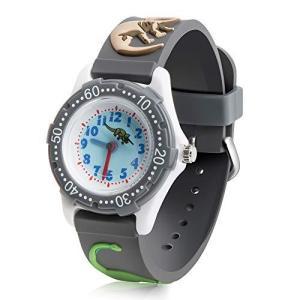 ColiChili キッズ 腕時計 子供用 3Dの恐竜柄 アラビア数字 見やすい 生活防水 グレー ボーイズ 面白い ウォッチ クオーツ アナログ表示 oceans-asa