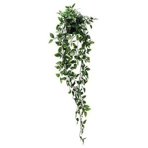 IKEA/イケア FEJKA:人工観葉植物/つり下げ型70 cm(403.495.45)|oceans-asa