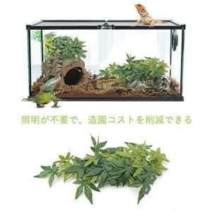 吸盤付き 爬虫類 人工植物 爬虫類 つる 爬虫類テラリウム オーナメント装飾 葉 植物 装飾 緑の偽の葉 両生類 爬虫類 飼育ケース内装(40cm)|oceans-asa