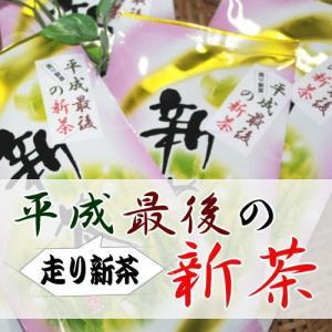 平成最後の新茶40g入り【数量限定】|ochaya
