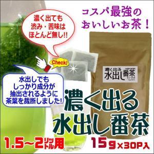 濃く出る水出し番茶ティーバッグ15g×30P入【九州産茶葉使用】 水出し緑茶 水出しお茶|ochaya