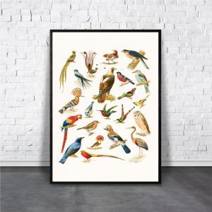 アートポスター/Aroma of Paris/選べる7サイズ&ポスター単品orフレームセット/Design:#289|octopus-goods01