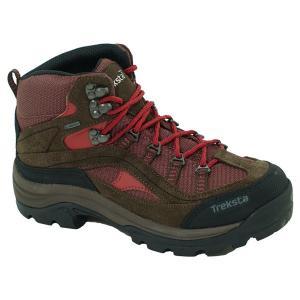 TrekSta トレクスタ エボリューションIIIGTX/BR/Brick 930 /22.5 EBK016 ブラウン 登山靴 トレッキングシューズ アウトドア 釣り 旅行用品 od-yamakei