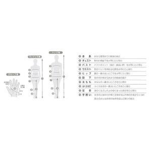 C3fit シースリーフィット インスピレーションゲイター ユニセックス /SN スモークネイビー /XS 3F06340 インナー 下着 ナイトウエア レディース 靴下 od-yamakei 04