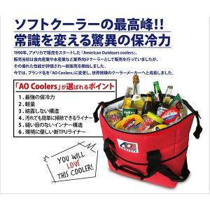 AO Coolers エーオークーラー 48 パック キャンバス ソフトクーラー/チャコール AO48CH グレー クーラーバッグ 保冷バッグ アウトドア 釣り 旅行用品|od-yamakei|03
