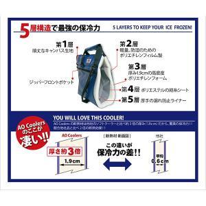 AO Coolers エーオークーラー 48 パック キャンバス ソフトクーラー/チャコール AO48CH グレー クーラーバッグ 保冷バッグ アウトドア 釣り 旅行用品|od-yamakei|04
