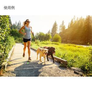 RUFFWEAR ラフウェア RW.ノットアロング/PMOG 1874442 オレンジ リード ペット用品 生き物 犬用品 首輪 ハーネス リード・ハーネス リード・ハーネス|od-yamakei|05