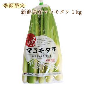 新潟県産マコモタケ(マコモダケ) 話題のヘルシー野菜 1kg...