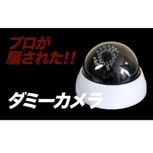 ダミーカメラ 防犯カメラ 監視カメラ 屋内 配線不要 防犯ステッカーやプレート看板と併用がオススメ|odin|02