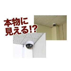 ダミーカメラ 防犯カメラ 監視カメラ 屋内 配線不要 防犯ステッカーやプレート看板と併用がオススメ|odin|03