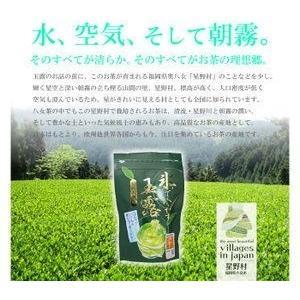2019年 新茶 冷茶の伝統本玉露 ギフトセット 5g×40 / 冷茶 八女 星野村|odorokitchen|03