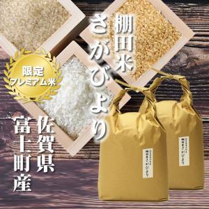 新米 10kg 5kgx2袋 さがびより 棚田米 佐賀県産