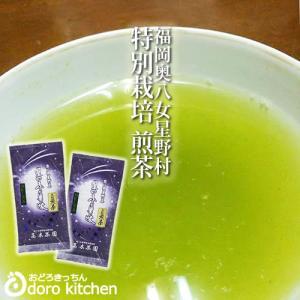 新茶 2020年産 深蒸し高級煎茶 100g×2袋 / 八女 星野茶 高木茶園 母の日