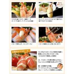 ボイル紅ずわいがに爪 ズワイガニ 業務用1キロ(送料無料) (カニ 蟹 紅ズワイ)|oec-kanisho|09