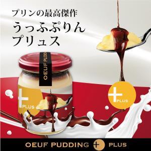 うっふぷりんプリュス 5個セット 冷蔵|oeuf-pudding2