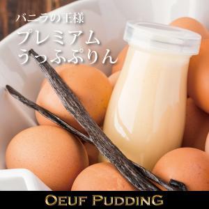 プレミアムうっふぷりん 6個入|oeuf-pudding2