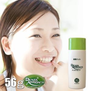 デンタアプローチ・レギュラーサイズ 56g  denta approach/歯磨きジェル 歯磨き 歯磨き粉 主婦 情熱 アイディア 大阪歯科大|offer1999