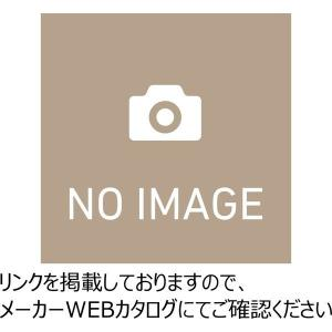 生興   デスク 100シリーズ 片袖デスク 5号片袖 W1060×D730×H740 脚間L584 100CG-851N|offic-one