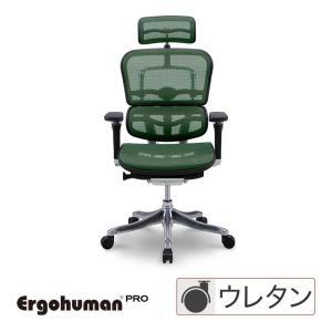 エルゴヒューマン プロ ハイタイプ エラストメリックメッシュグリーン EHP-HAM-KM14 Ergohuman Pro