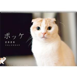 2020年 壁掛 カレンダー No.029 ポッケ 100010109238 アートプリントジャパン|officeland