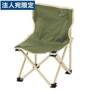 カクセー ピックドア ミドルチェア 収納袋付 PIC-05 キャンプ アウトドア チェア 椅子 イス 折りたたみ 軽量 officetrust