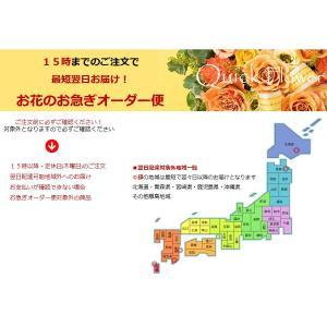 母の日 ソープで贈るアレンジ「パレット」ノーブルピンク 期間限定!ソープの胡蝶蘭無料サービス|offrir|04
