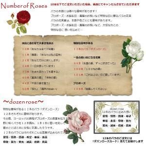 バラ 花束「本数指定で贈る深紅のバラ」赤  本数指定 生花 誕生日 記念日 ホワイトデー 母の日 父の日 敬老の日 クリスマス|offrir|06