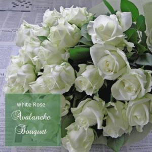 クリスマス 誕生日 バラ 花束 生花 ブーケ 本数指定白いバラ 「セレクトホワイトローズ」|offrir