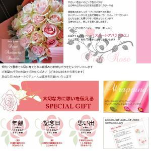 クリスマス 誕生日 バラ 花束 生花 ブーケ 本数指定ピンクのバラ  「セレクトピンクローズ」|offrir|03