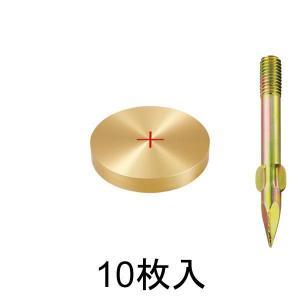 真鍮製基準点鋲 フラットタイプ 径30mm 10枚入:BS30F|offsite