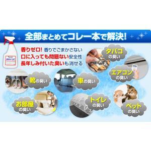 ミラクリーンR 500ml マスク 除菌 抗菌 消臭 防カビ  業務用 持続性抗菌消臭スプレー  送料無料|og-land|04