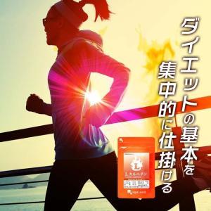 【新春1年分セール】Lカルニチン (lカルチニンフマル酸塩) ダイエット サポート アミノ酸 燃焼系 健康食品 サプリメント 約12ヶ月分