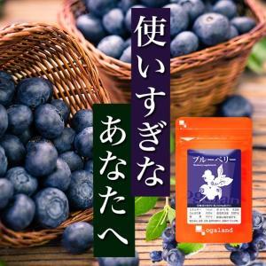 【1年分】ブルーベリー 健康食品 サプリメント 約12ヶ月分...