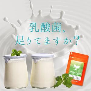【新春1年分セール】乳酸菌 (EC-12) オリゴ糖 フラクトオリゴ糖 便秘 ダイエット エイジングケア サプリメント 約12ヶ月分