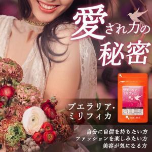 【新春1年分セール】プエラリア サプリ 健康食品 サプリメント 約12ヶ月分