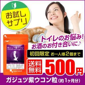 ウコン サプリ クルクミン ガジュツ 紫うこん サプリメント...
