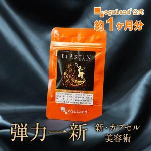 エラスチン オレイン酸 サプリ ビタミンA ビタミンK ビタミンB2 エイジングケア デスモシン サプリメント 約1ヶ月分_ZRB