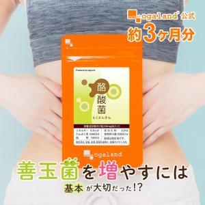 酪酸菌 カルボン酸 短鎖脂肪酸 有機酸 オリゴ糖 機能性アミノ酸 サプリ サプリメント 約3ヶ月分_ZRB