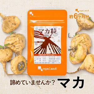マカ サプリメント 亜鉛 カルシウム 約6ヶ月分 【半年分】...