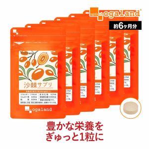 沙棘 サジー サプリ 不飽和脂肪酸 ビタミン アミノ酸 ミネラル 豊富な ジュース よりお手軽な サプリメント 約6ヶ月分_ZRB