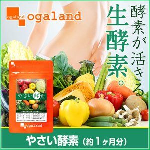 酵素 サプリ やさい酵素 ダイエット オリゴ糖 植物発酵 濃...