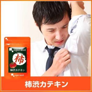 【Mens】《メンズサプリ》 柿渋 シャンプー や 石鹸 でお馴染みの 柿渋 飲むエチケット 約3ヶ月分