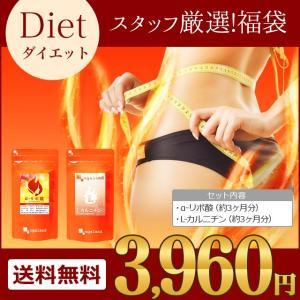 【福袋】 ダイエットサポートサプリメント α-リポ酸&L-カルニチン (各約3ヶ月分) 送料無料 人気組み合わせスタッフ厳選!
