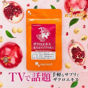 イソフラボン サプリ ザクロエキス エイジングケア 大豆  豆乳 より手軽な サプリメント 約3ヶ月...