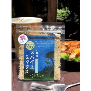 スパイスミックス レモンソルト|ogasawara-market