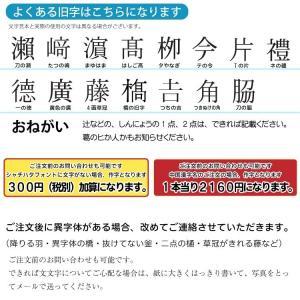 定形外郵便送料無料 キャップレス ジョインティ J9 ネーム印 朱肉不要|ogawahan|16